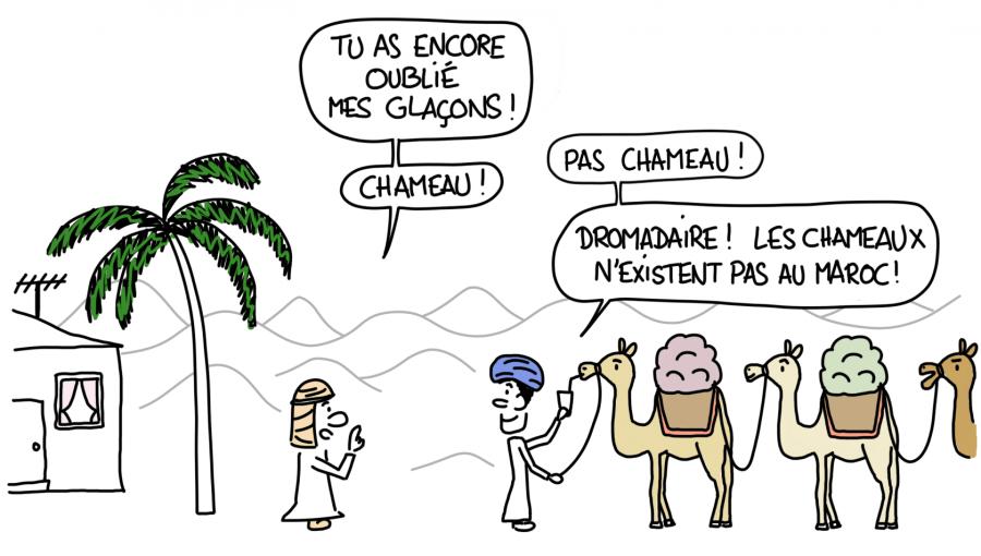 Caravanier dans le désert du Maroc