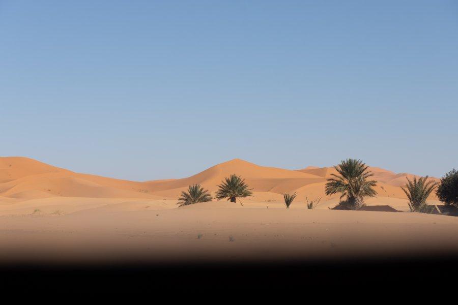 Dunes du Sahara à Merzouga