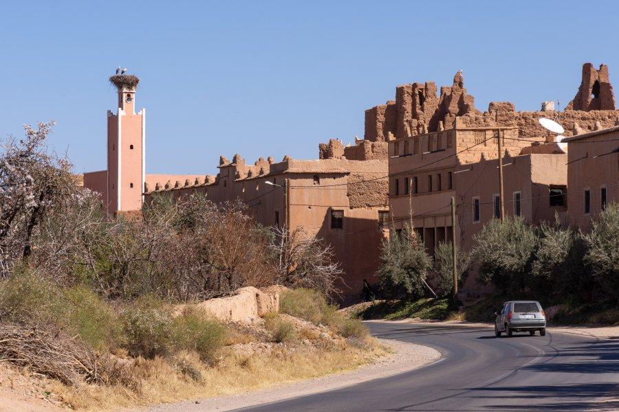 Cigogne près de Skoura au Maroc