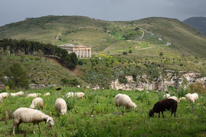 Temple de Segesta, Sicile, Italie