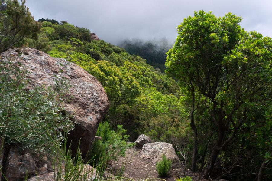 Randonnée dans la montagne sur le Monte Fosse delle Felci