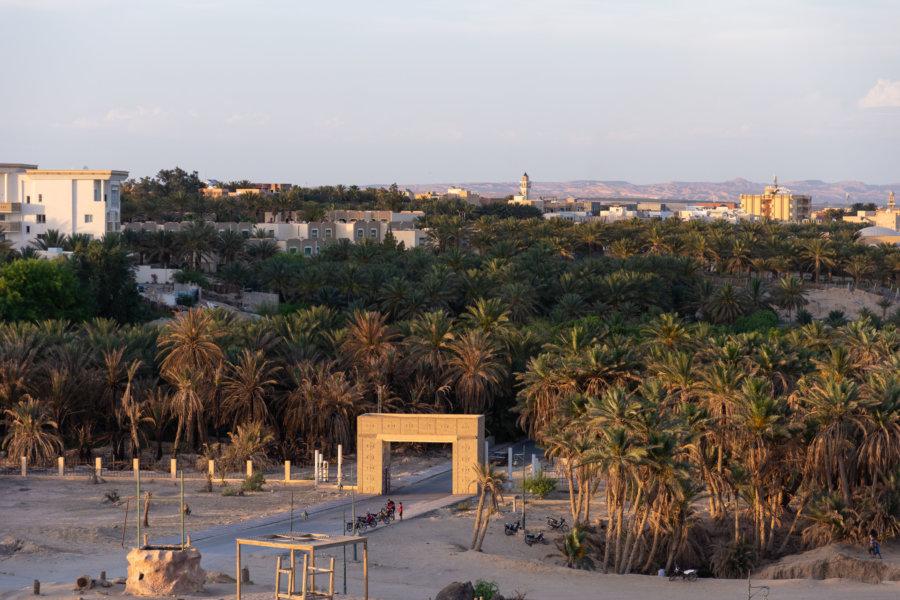 Belvédère de Tozeur et vue sur la palmeraie