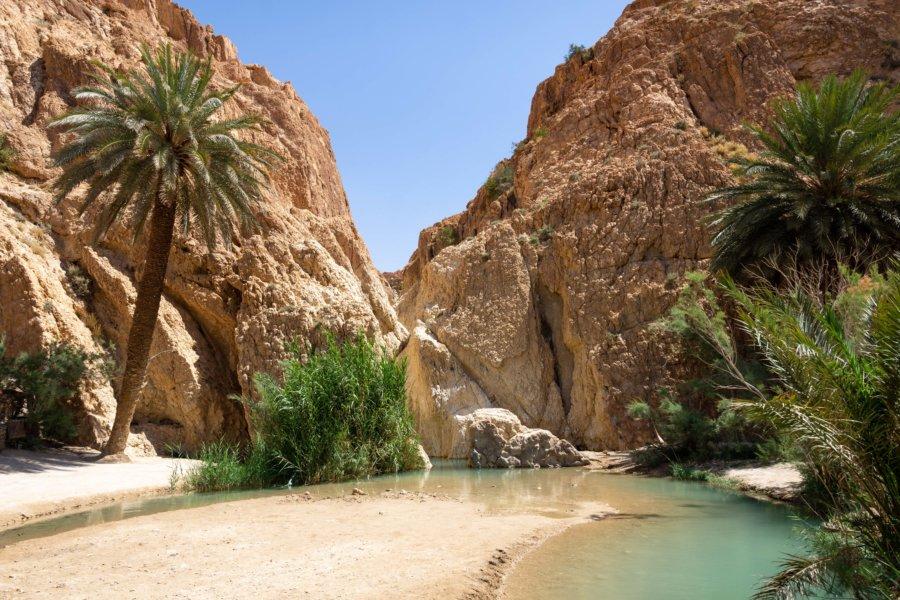 Lac turquoise à l'oasis de Chebika, Tunisie
