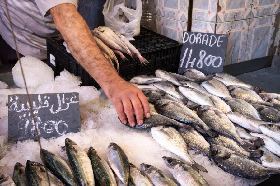 Marché aux poissons en Tunisie