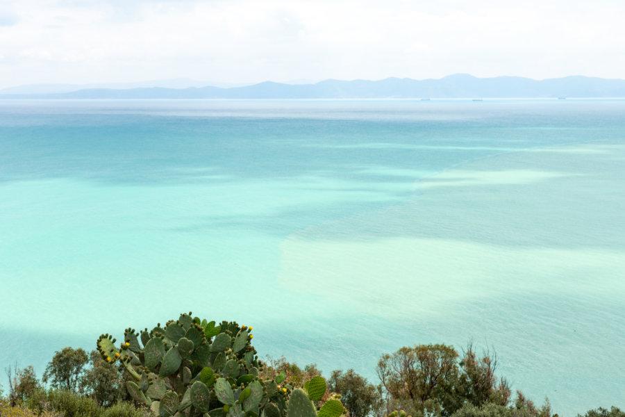 Mer turquoise à Sidi Bou Saïd