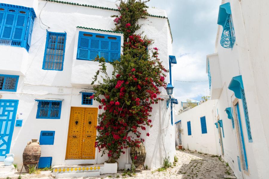 Ruelle de Sidi Bou Saïd, Tunisie