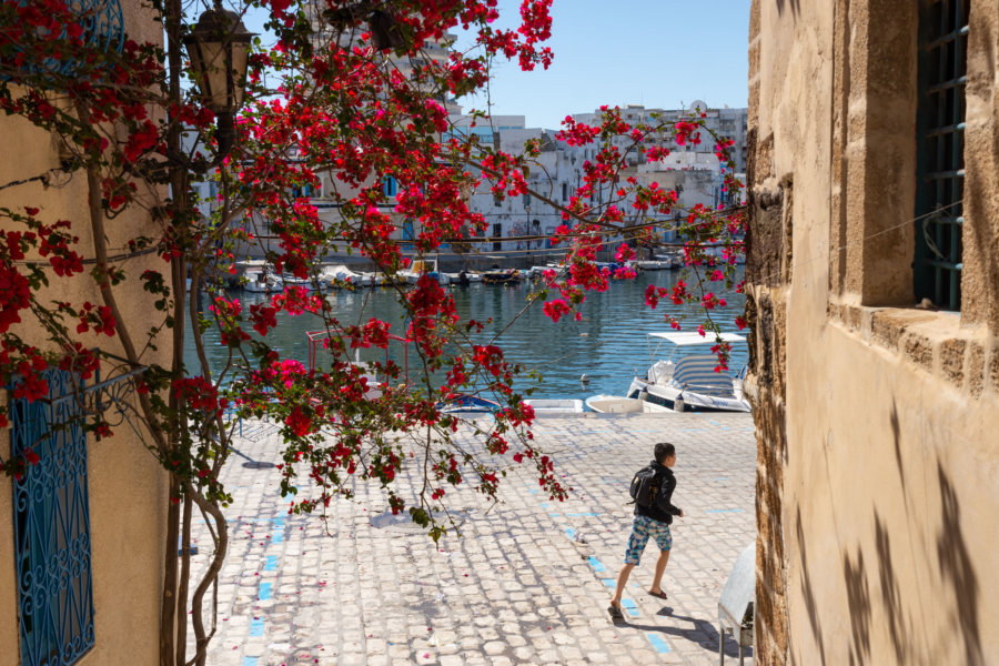 Port et fleurs à Bizerte