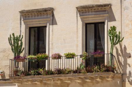 Cactus sur un balcon à Lecce, Italie