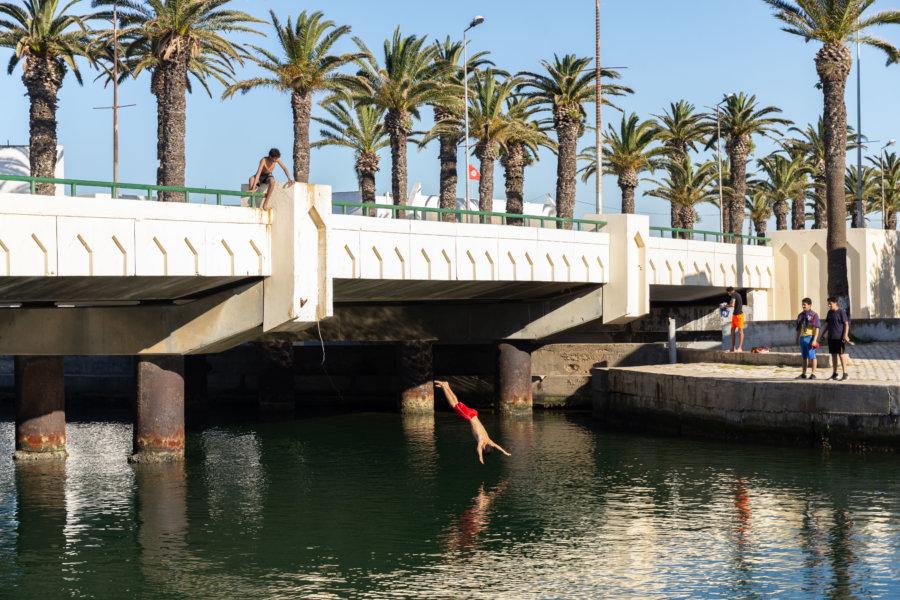 Plongeons dans le canal de Bizerte