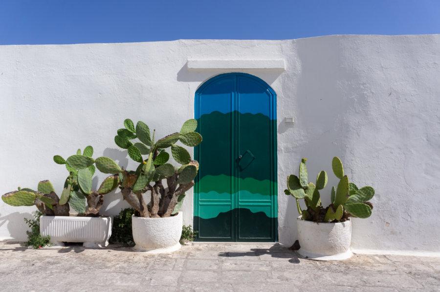 Porte et cactus à Ostuni en Italie