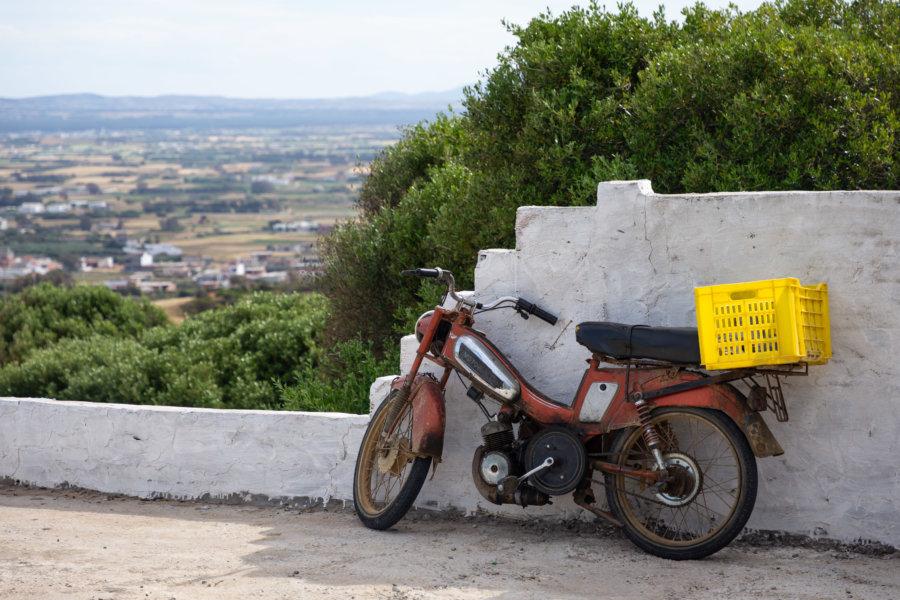 Scooter à la campagne, Cap Bon, Tunisie