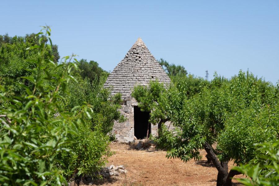 Trullo en pierres près d'Ostuni dans les Pouilles