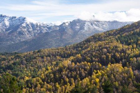 Montagnes corses à l'automne