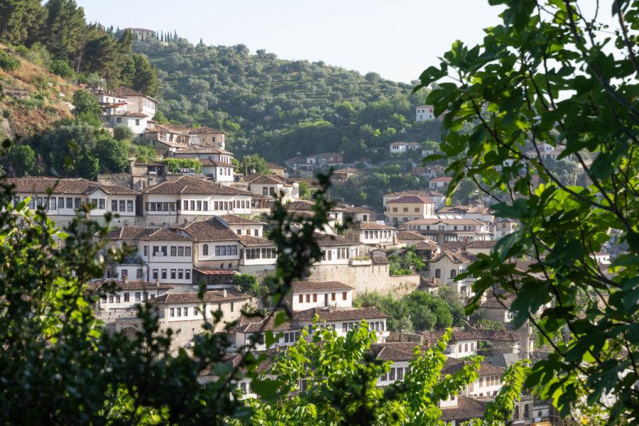 Vue sur Berat et ses maisons traditionnelles
