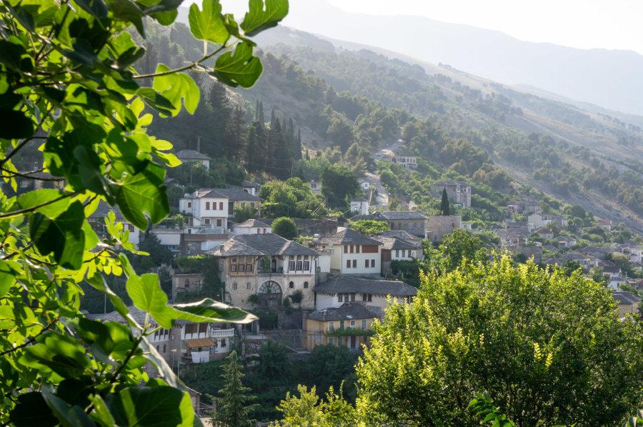 Tower houses à Gjirokastër en Albanie