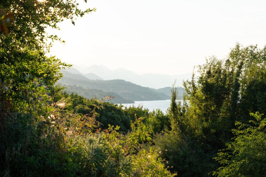 Lac de Shkodër en Albanie
