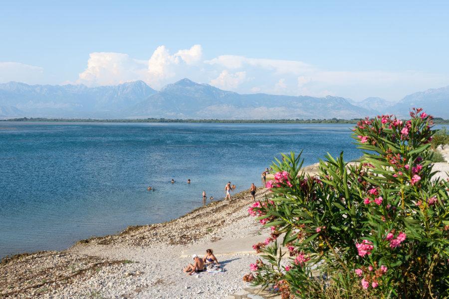 Lac de Shkodra en Albanie l'été