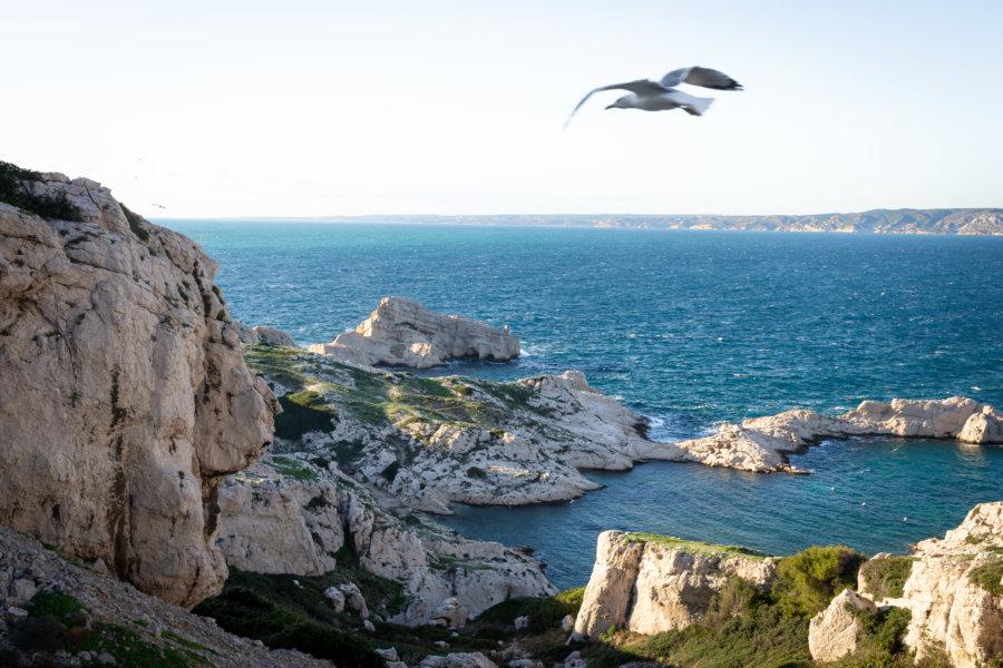 Île de Pomègues, Frioul, Marseille