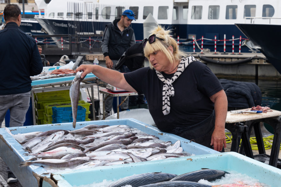 Marché aux poissons à Marseille
