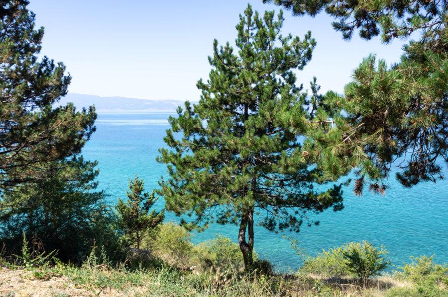 Promenade au bord du lac d'Ohrid