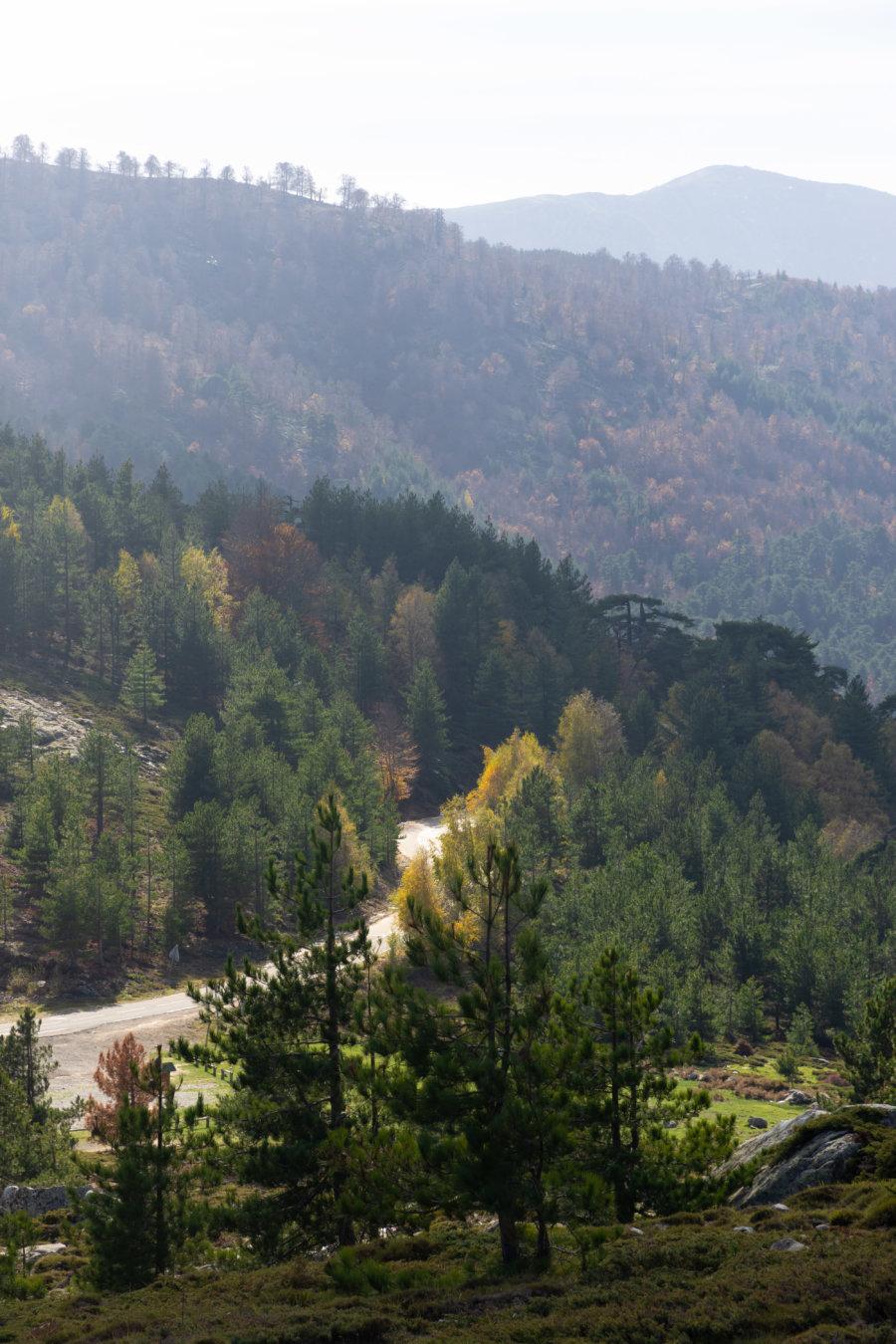 Col de Vergio, automne en Corse