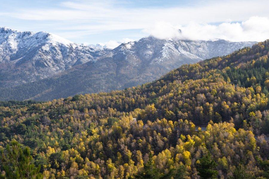Montagnes corses à l'automne, col de Vergio