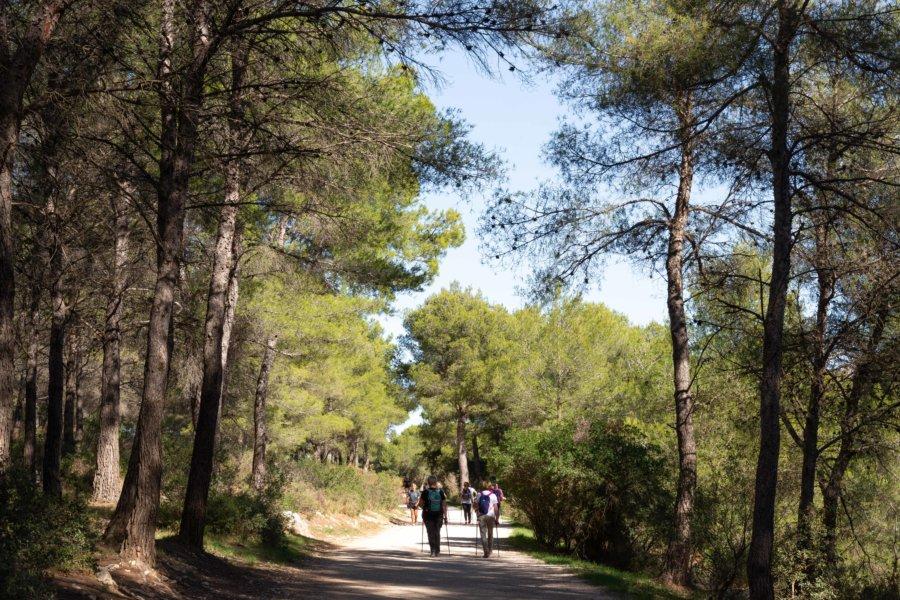 Entrée dans le parc national des Calanques