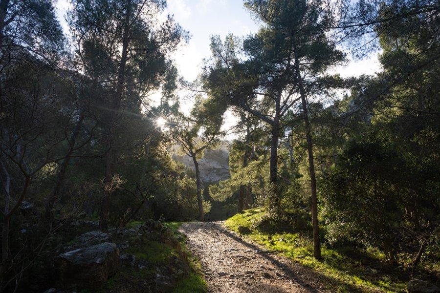 Randonnée dans le parc national des calanques