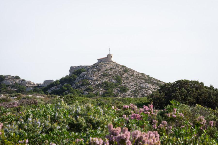Randonnée à Callelongue, Calanques de Marseille