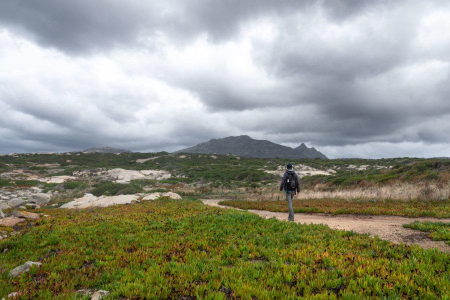 Randonnée à Lumio et la Pointe de Spano, Haute-Corse