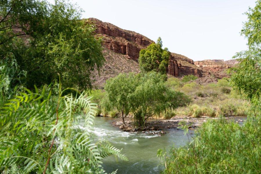 Canyon del Atuel à San Rafael, Argentine