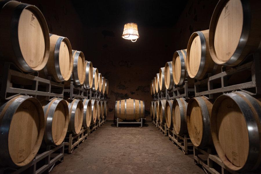 Bodega à San Rafael, vin argentin