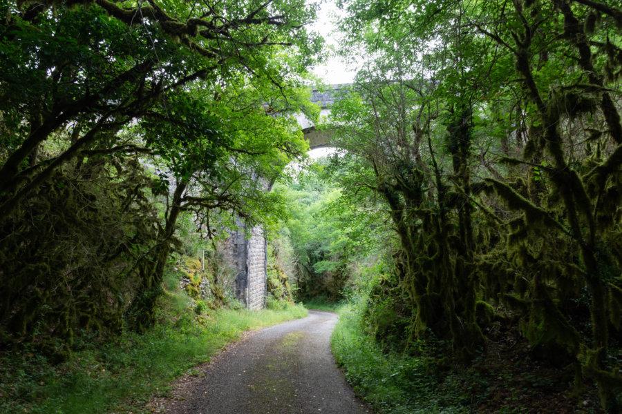 Randonnée de Cahors à Saint-Cirq-Lapopie