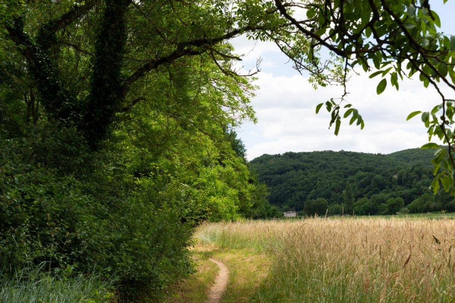 Randonnée dans le parc des Causses du Quercy