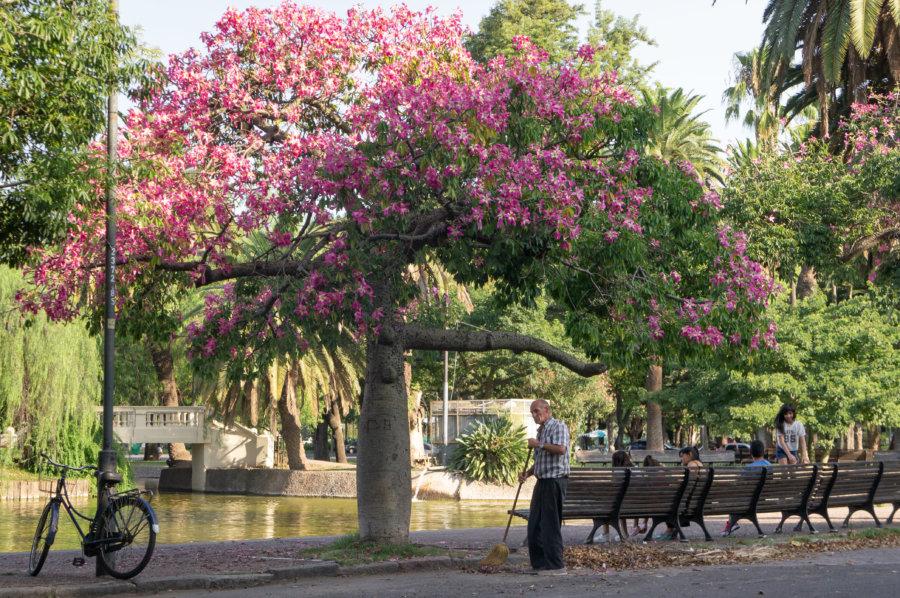 Parque de la Independencia à Rosario