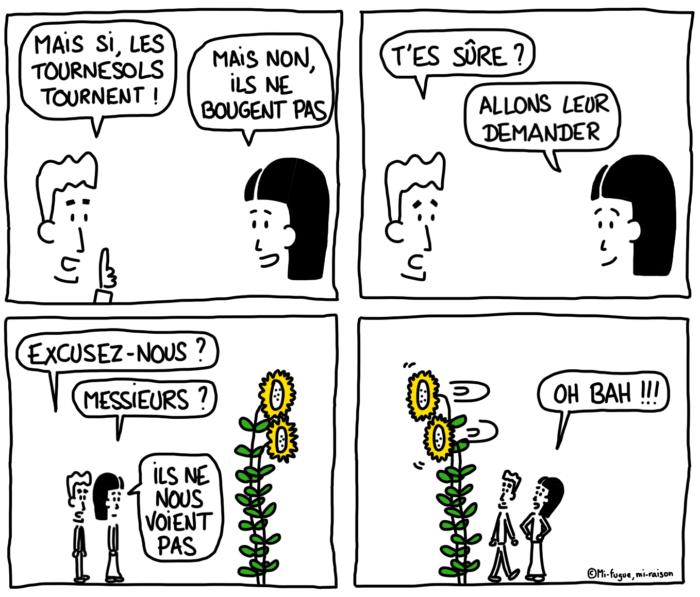 Dessin : les tournesols
