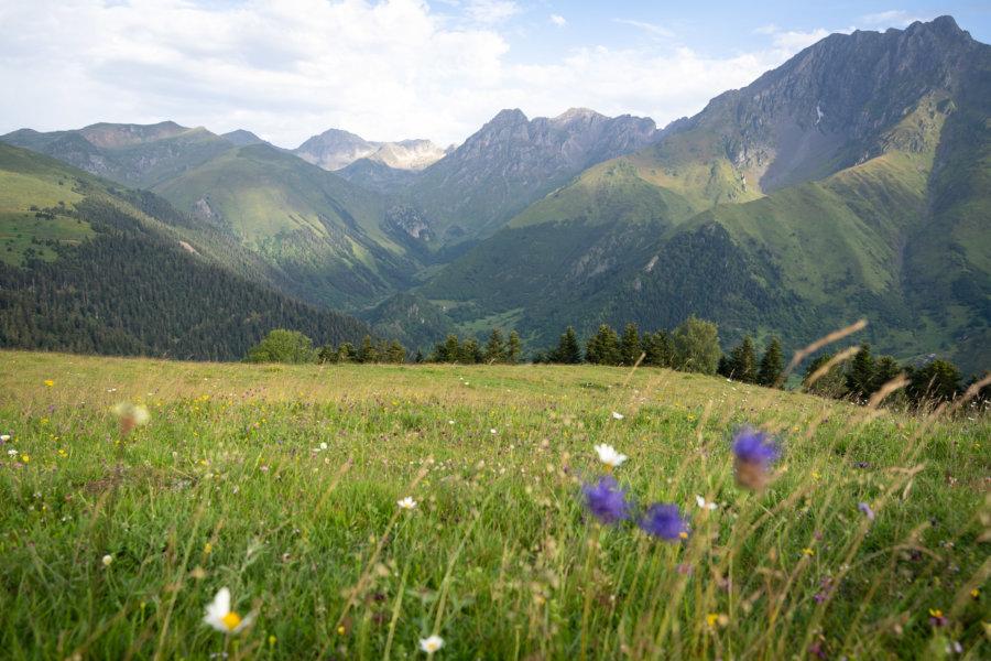 Grascoueou : la montagne l'été dans les Pyrénées