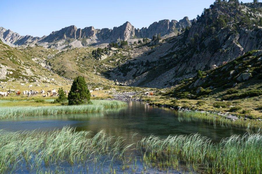 Randonnée à la montagne l'été : réserve du Néouvielle