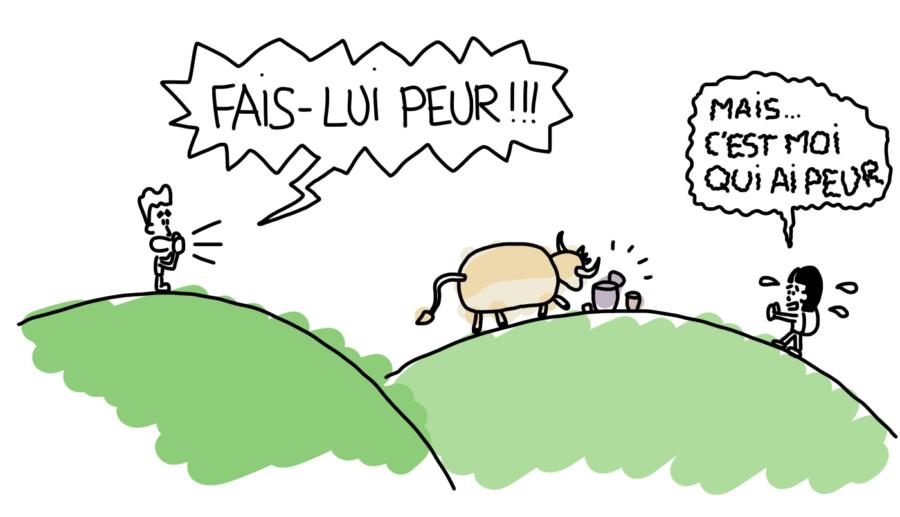 Dessin : vache qui vient manger dans nos affaires