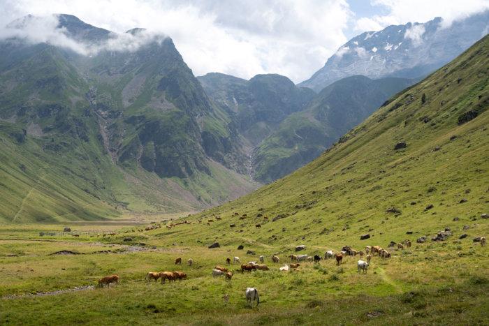 Vallée de Gela, les montagnes des Pyrénées l'été
