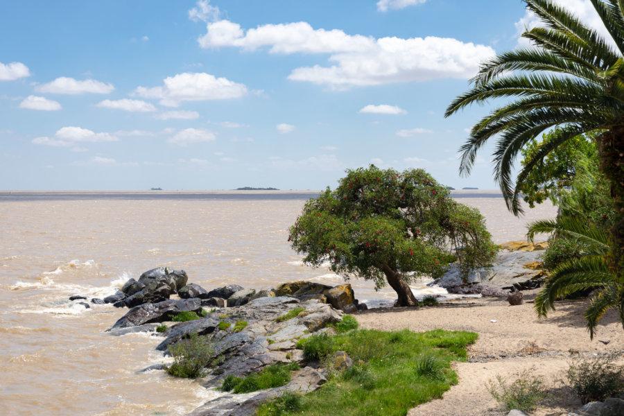 Bord du fleuve de la Plata à Colonia del Sacramento
