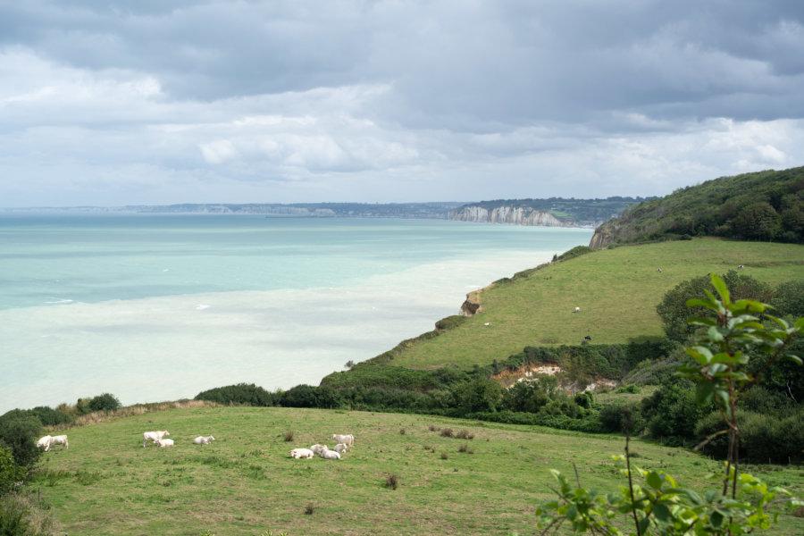 Vue sur la côte d'Albâtre depuis Varengeville sur Mer, randonnée GR21 Normandie