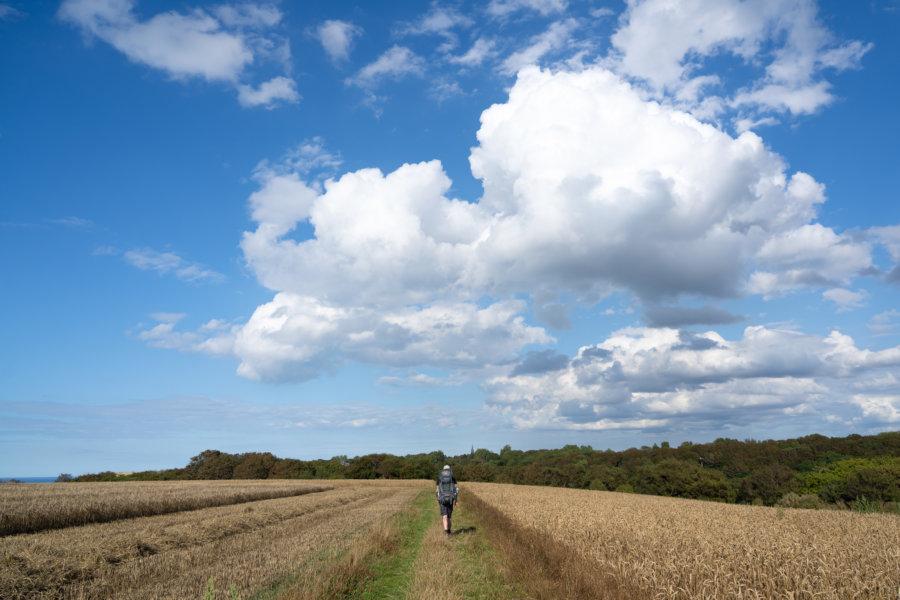 Randonnée à travers champs sur le trek GR21