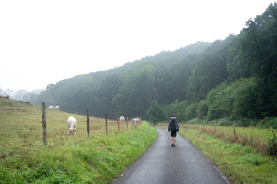 Randonnée sur le GR21 en Normandie sous la pluie