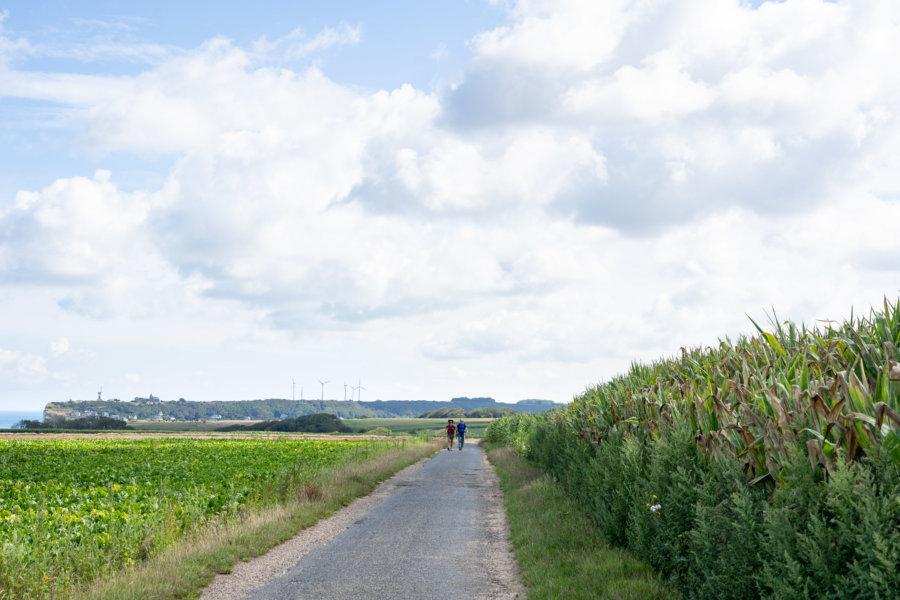 Randonnée entre Yport et Fécamp