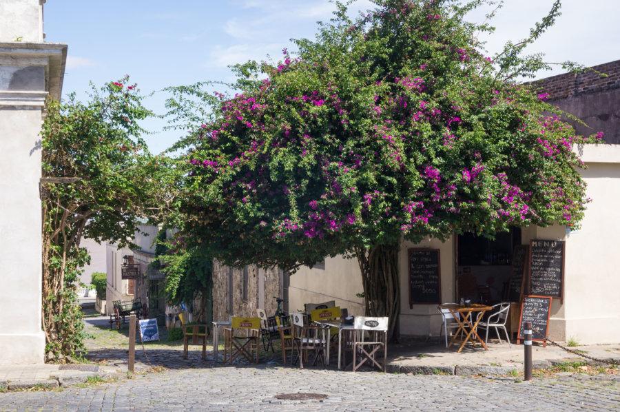 Terrasse dans une rue de Colonia del Sacramento en Uruguay