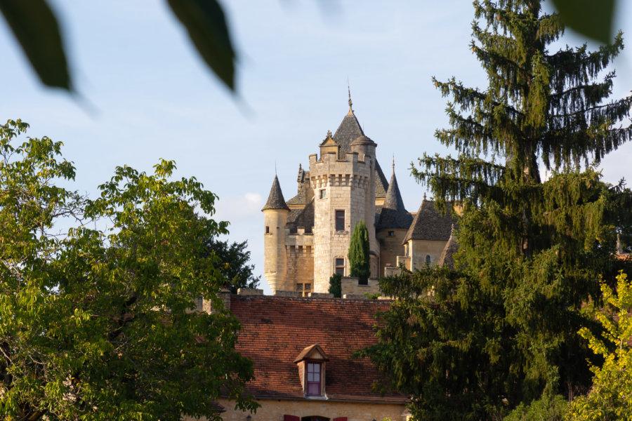 Château de Montfort à Vitrac en Dordogne