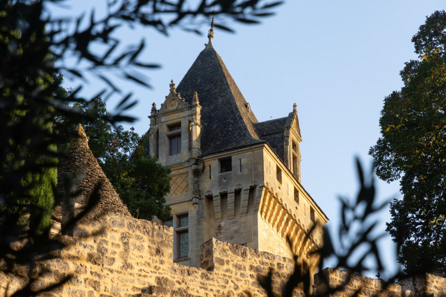 Château de Montfort à Vitrac dans le Périgord noir