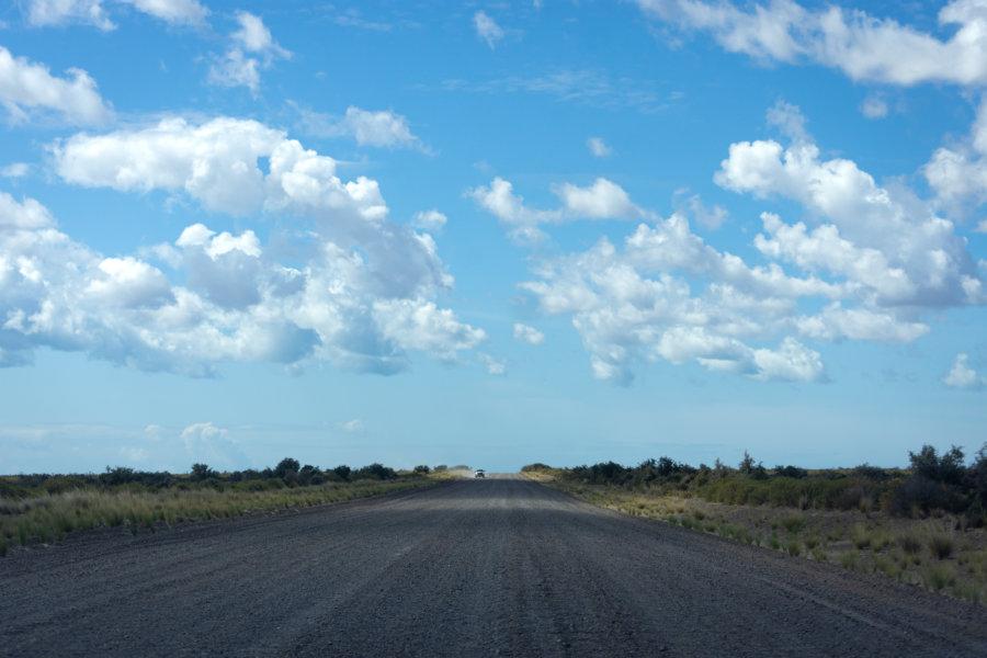 Route sur la péninsule de Valdès en Patagonie argentine