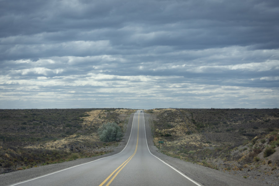 Route dans la pampa entre Puerto Madryn et Punta Tombo